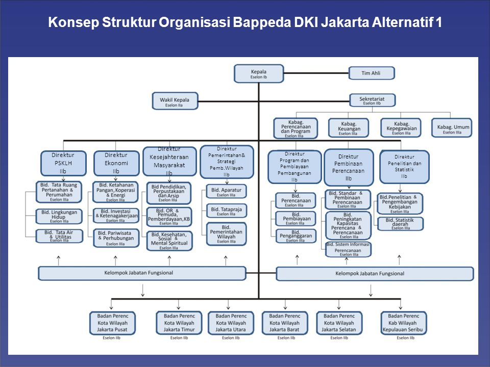 Konsep Struktur Organisasi Bappeda DKI Jakarta Alternatif 1