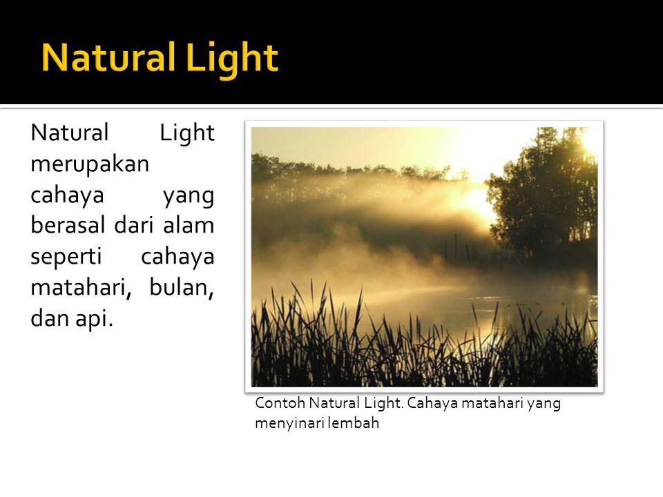 Natural Light Natural Light merupakan cahaya yang berasal dari alam seperti cahaya matahari, bulan, dan api.