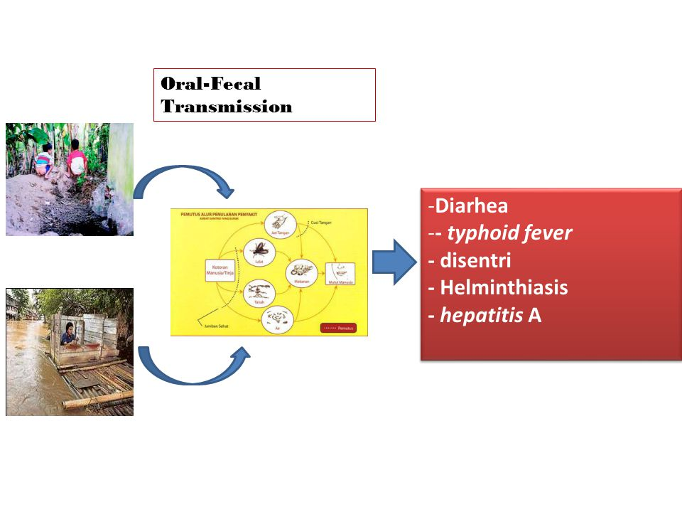 Diarhea - typhoid fever - disentri - Helminthiasis - hepatitis A