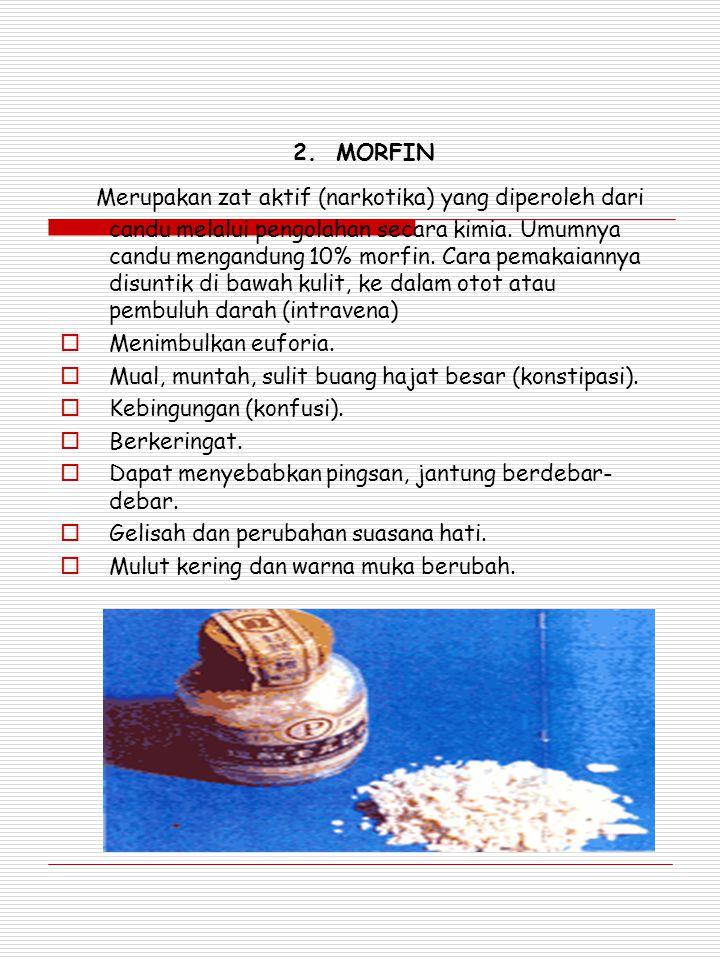 2. MORFIN