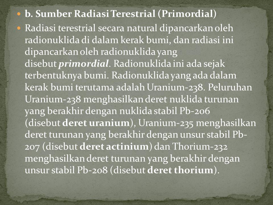 b. Sumber Radiasi Terestrial (Primordial)
