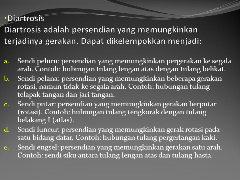 Diartrosis Diartrosis adalah persendian yang memungkinkan terjadinya gerakan. Dapat dikelempokkan menjadi: