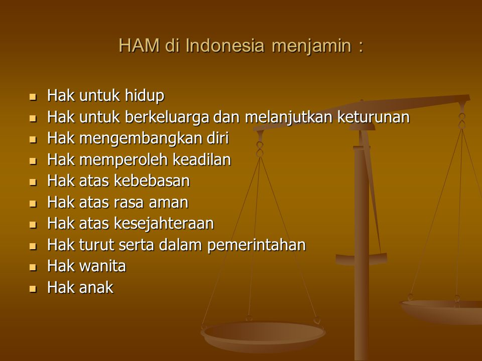 HAM di Indonesia menjamin :