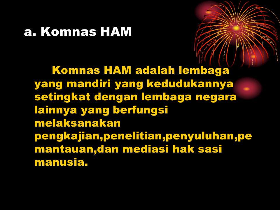 a. Komnas HAM