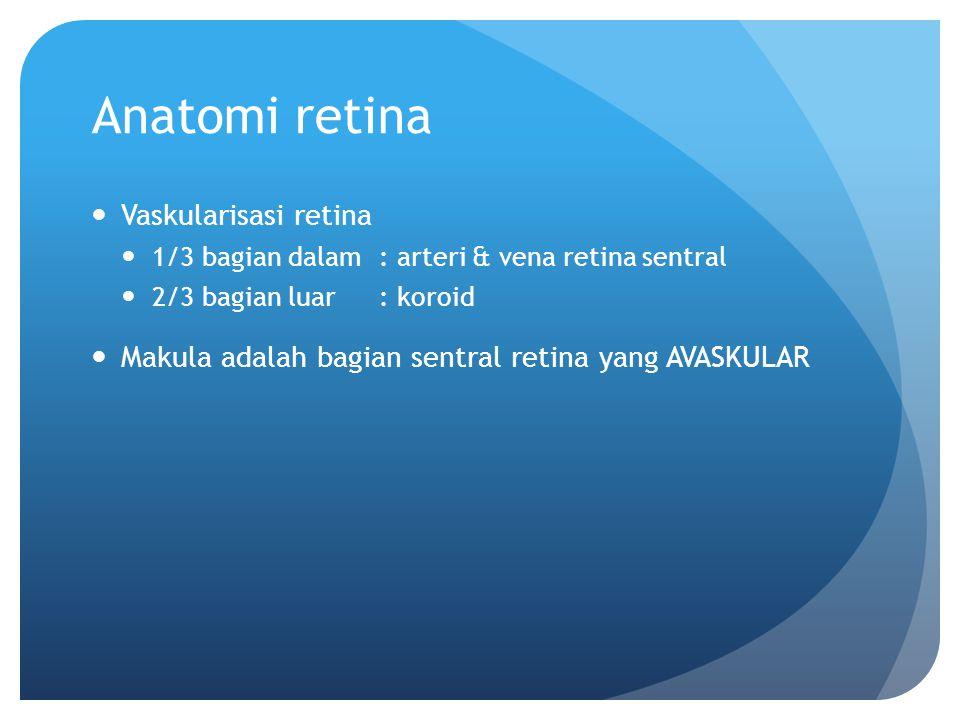 Anatomi retina Vaskularisasi retina