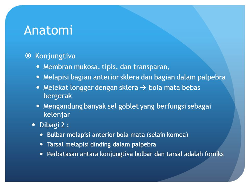 Anatomi Konjungtiva Membran mukosa, tipis, dan transparan,