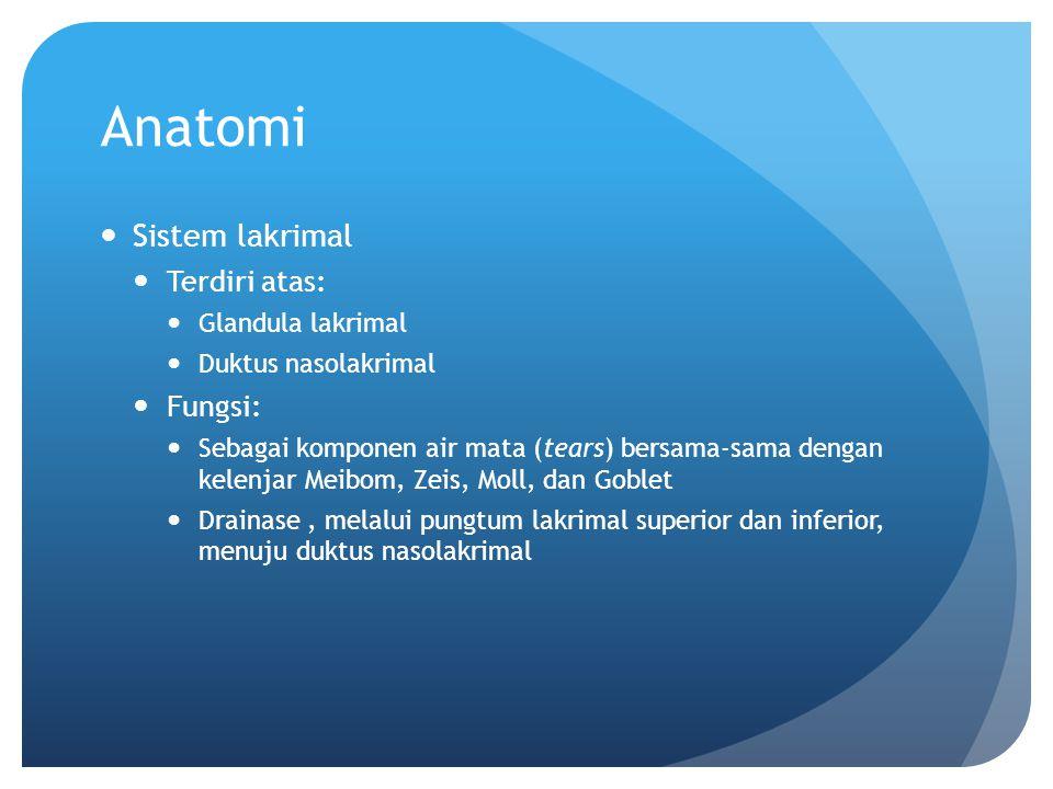 Anatomi Sistem lakrimal Terdiri atas: Fungsi: Glandula lakrimal