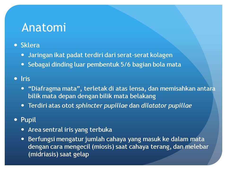 Anatomi Sklera Iris Pupil