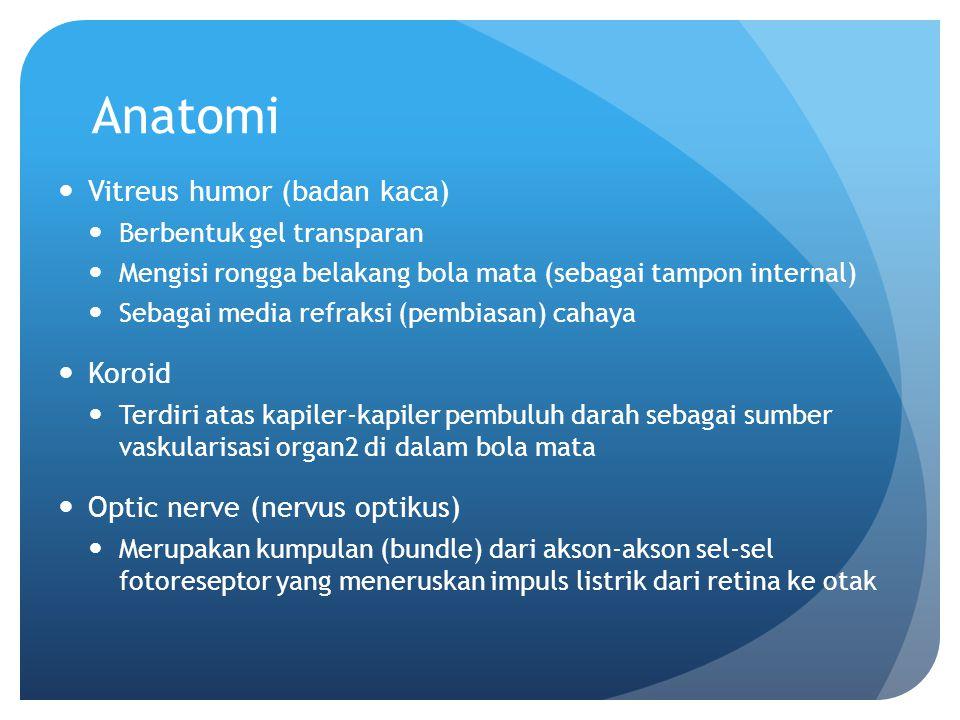 Anatomi Vitreus humor (badan kaca) Koroid Optic nerve (nervus optikus)