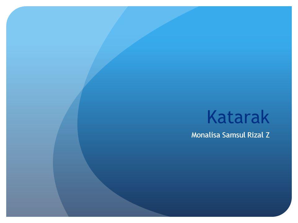 Monalisa Samsul Rizal Z