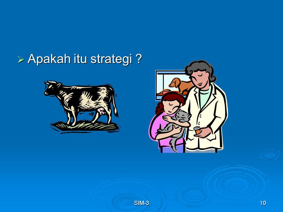 Apakah itu strategi SIM-3