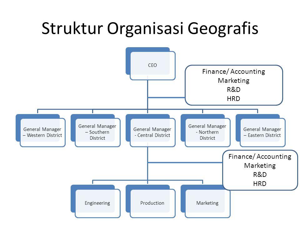 Struktur Organisasi Geografis