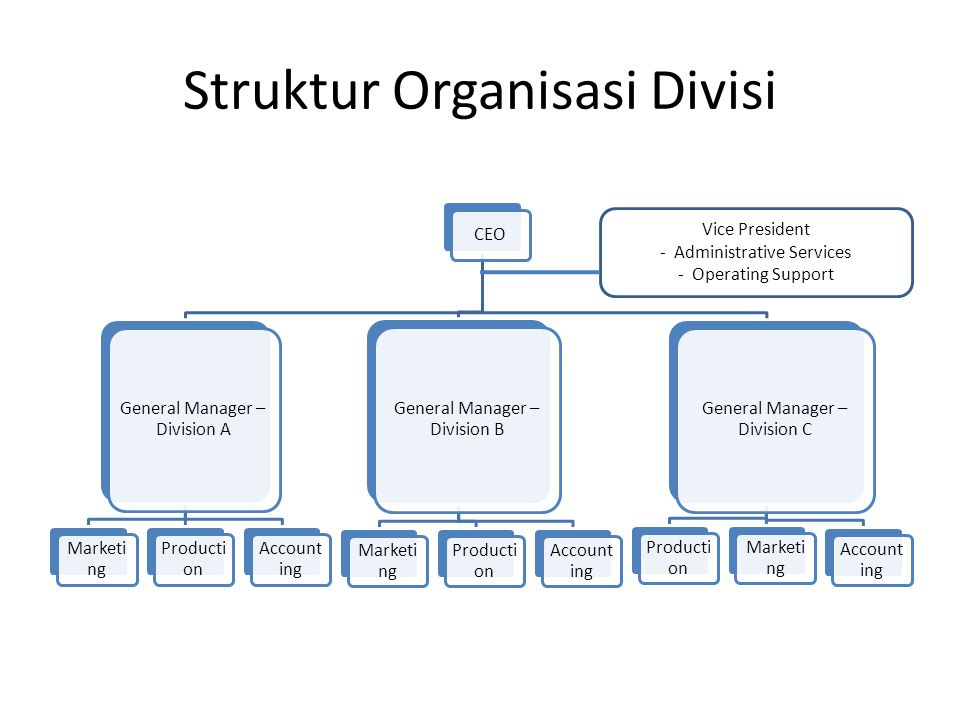 Struktur Organisasi Divisi