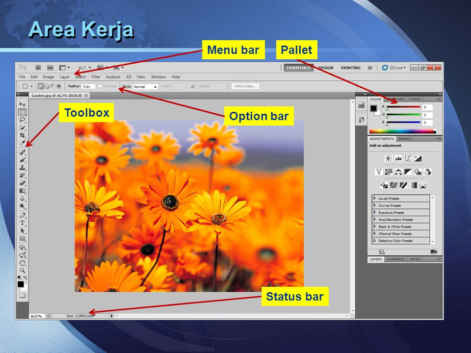 Area Kerja Menu bar Pallet Toolbox Option bar Status bar