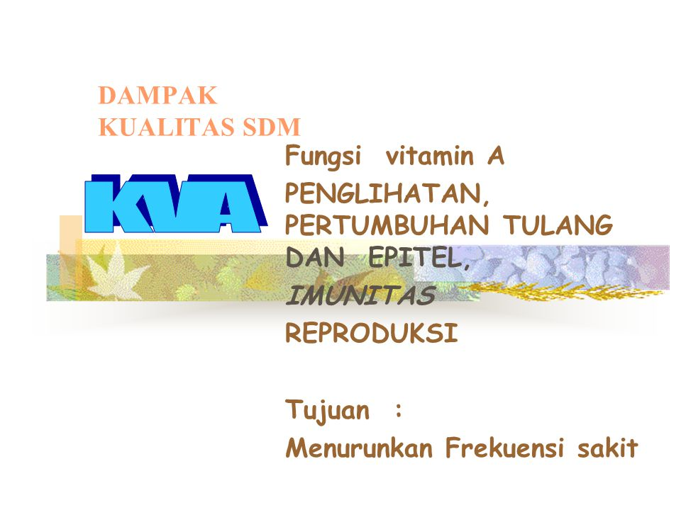 KVA DAMPAK KUALITAS SDM Fungsi vitamin A