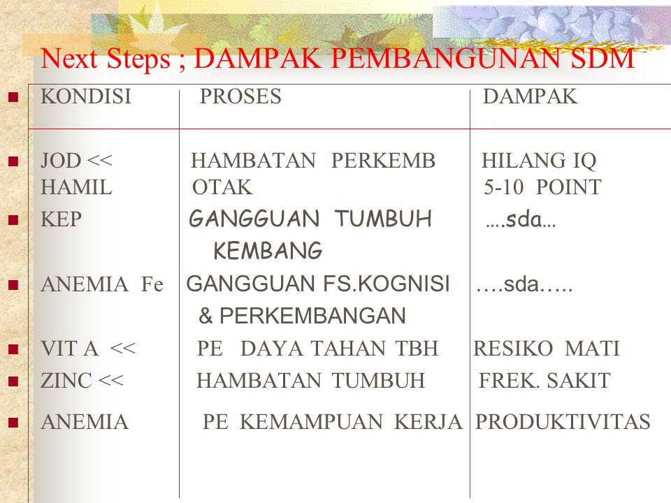 Next Steps ; DAMPAK PEMBANGUNAN SDM