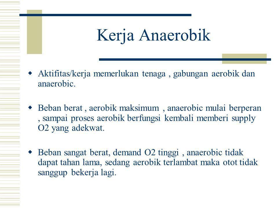Kerja Anaerobik Aktifitas/kerja memerlukan tenaga , gabungan aerobik dan anaerobic.