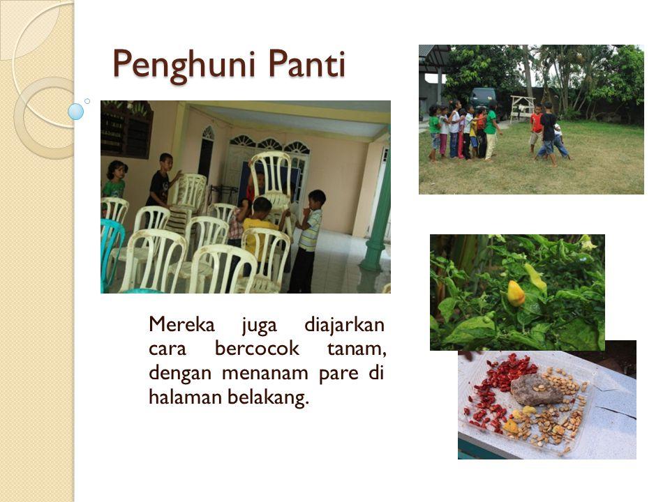 Penghuni Panti Mereka juga diajarkan cara bercocok tanam, dengan menanam pare di halaman belakang.