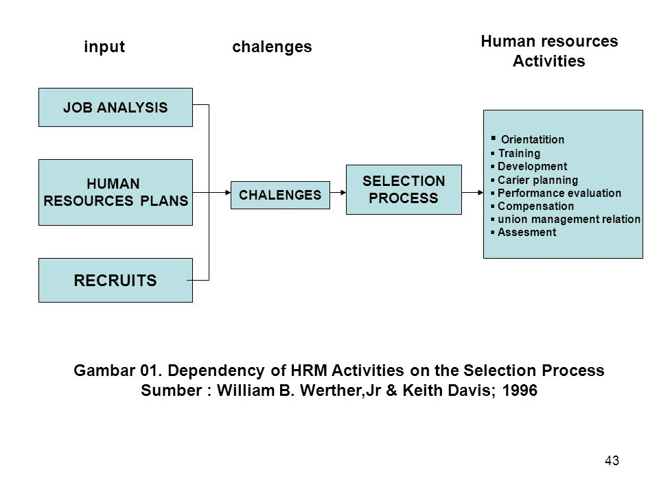 Gambar 01. Dependency of HRM Activities on the Selection Process