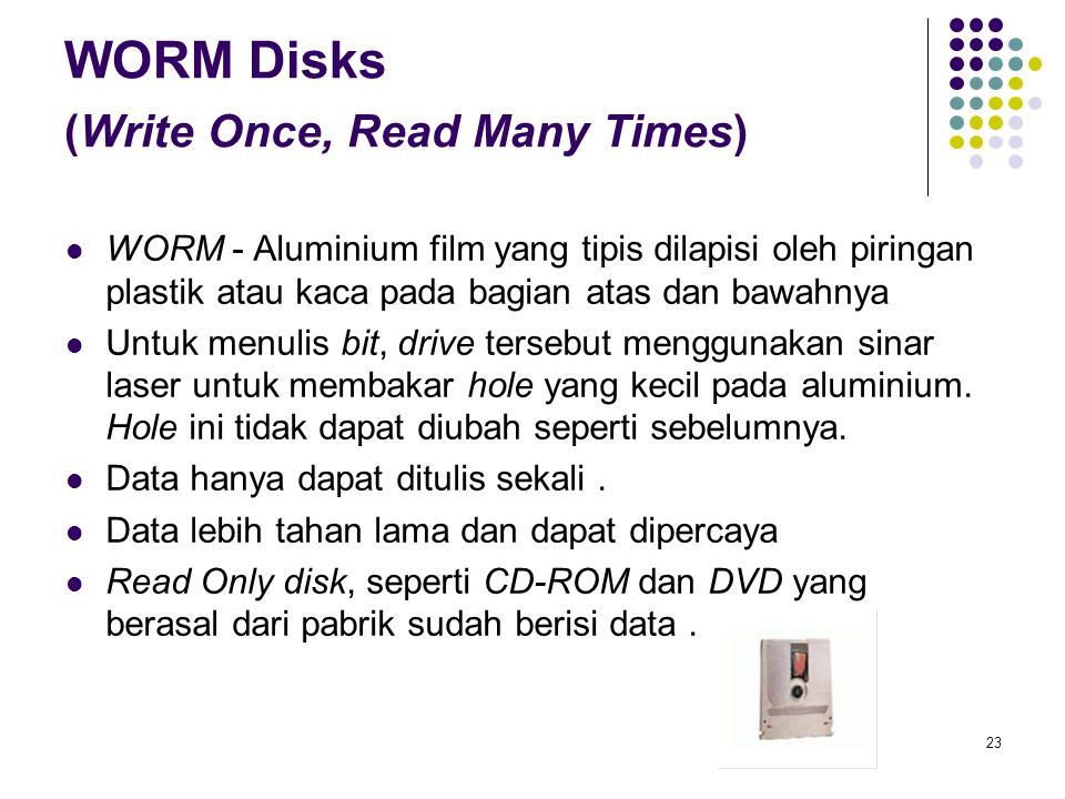 WORM Disks (Write Once, Read Many Times)