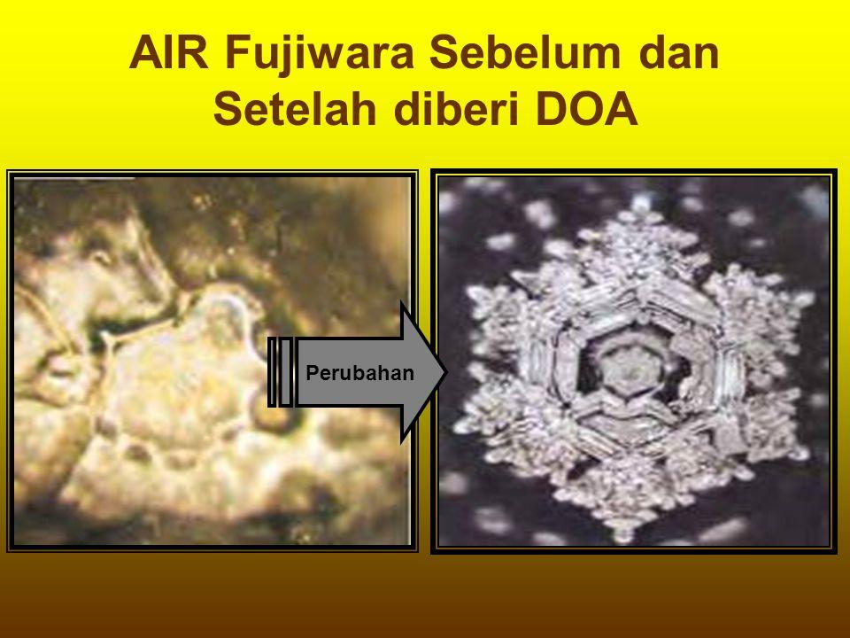 AIR Fujiwara Sebelum dan Setelah diberi DOA