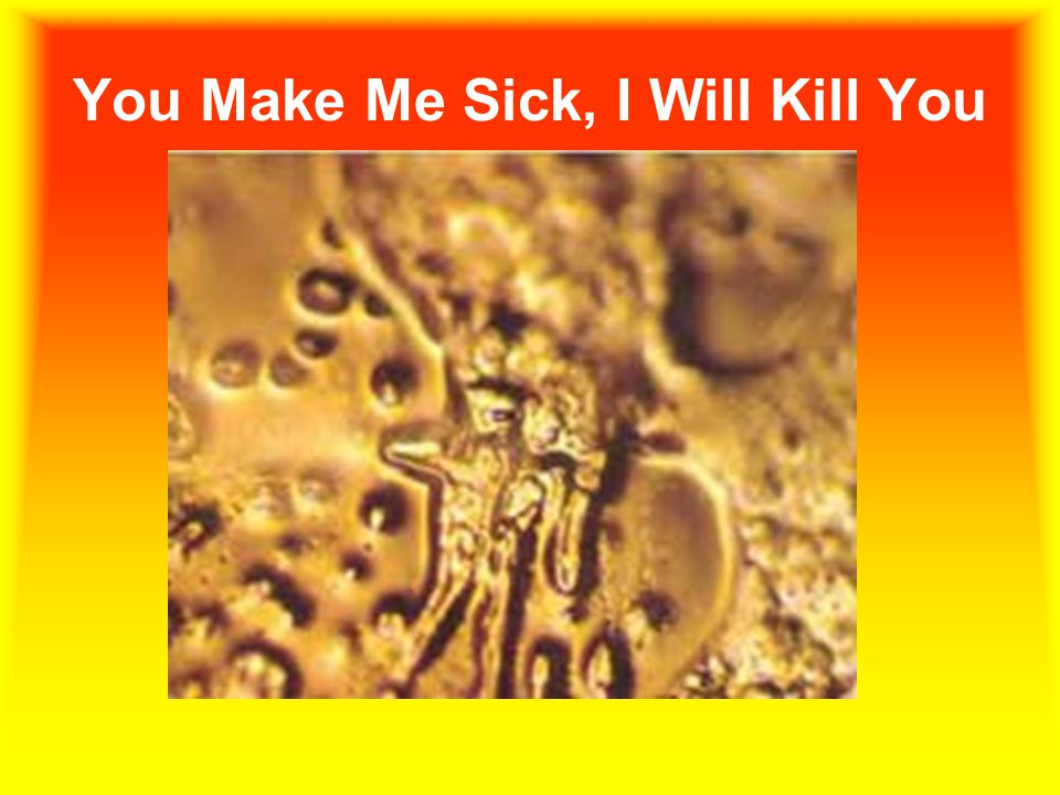 You Make Me Sick, I Will Kill You