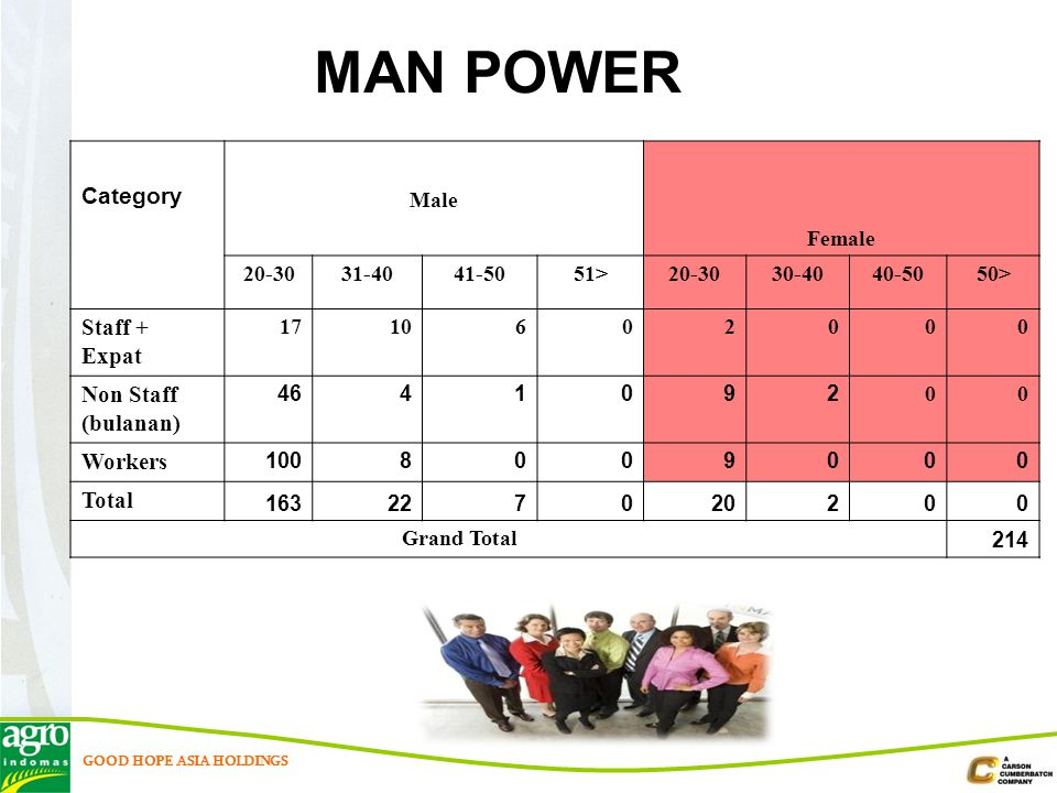 MAN POWER Category Staff + Expat Non Staff (bulanan) Workers Total