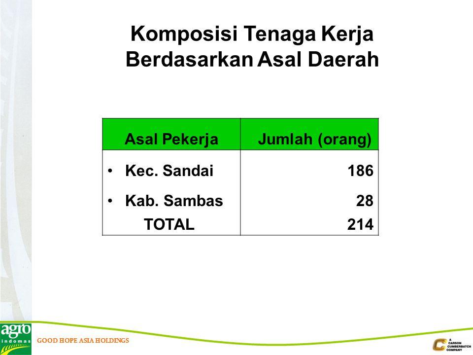Komposisi Tenaga Kerja Berdasarkan Asal Daerah