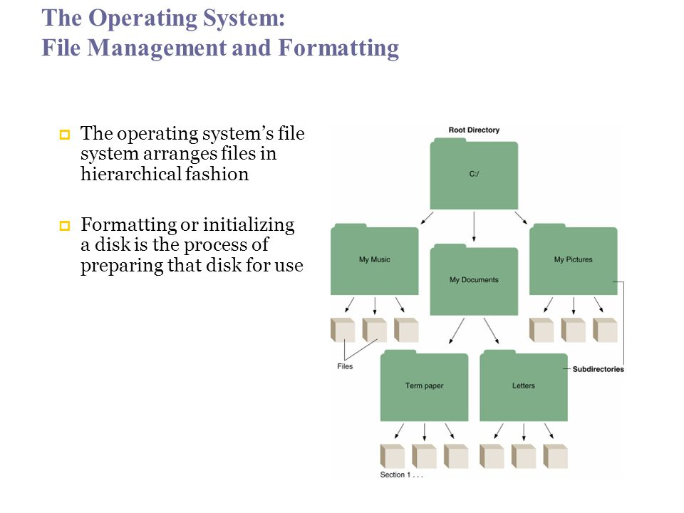 The Operating System: File Management and Formatting