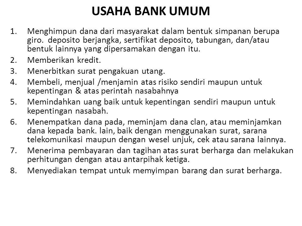 USAHA BANK UMUM