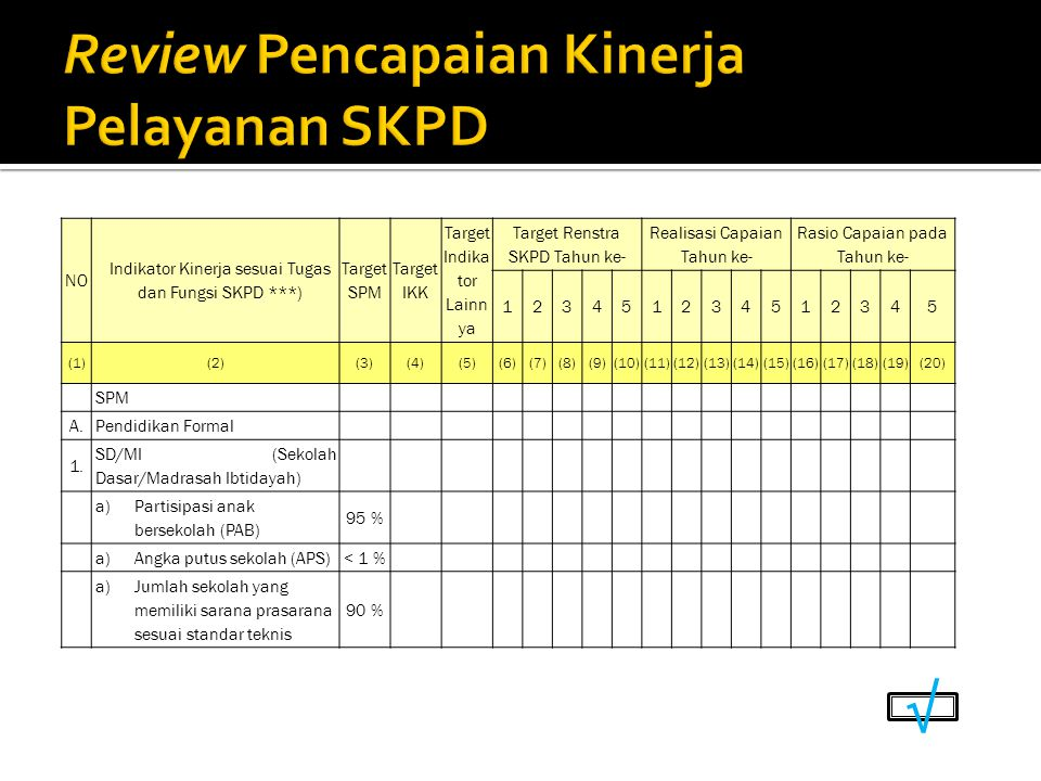 Review Pencapaian Kinerja Pelayanan SKPD