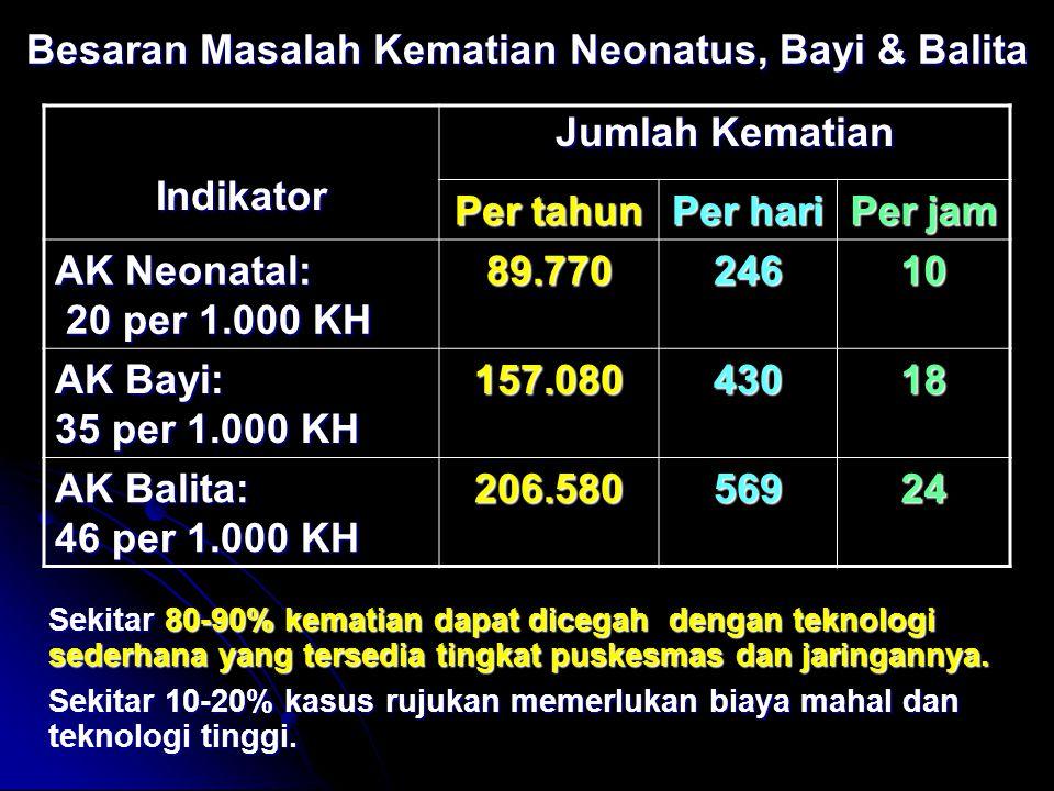 Besaran Masalah Kematian Neonatus, Bayi & Balita