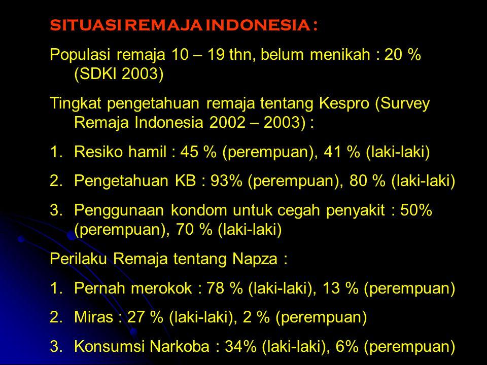SITUASI REMAJA INDONESIA :