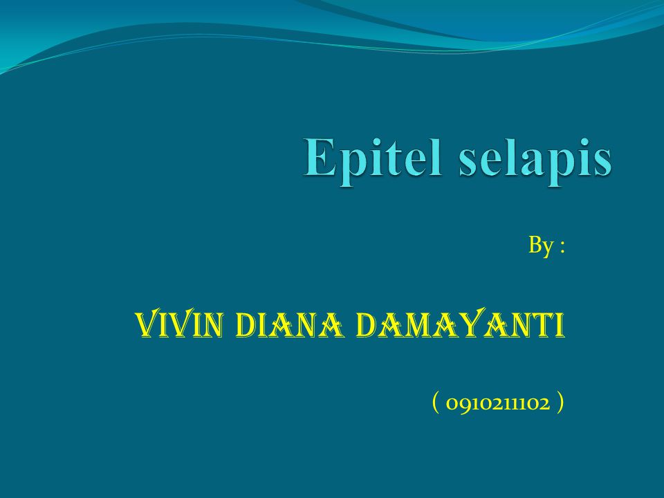 By : VIVIN DIANA DAMAYANTI ( )