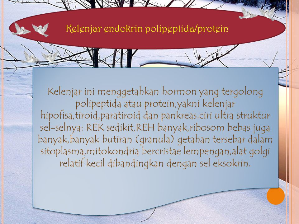 Kelenjar endokrin polipeptida/protein