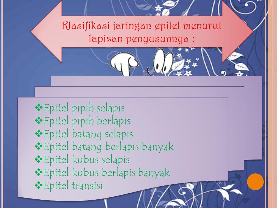Klasifikasi jaringan epitel menurut lapisan penyusunnya :
