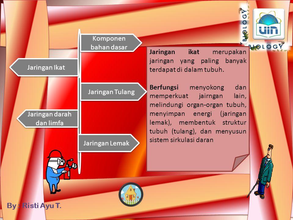 Jaringan darah dan limfa