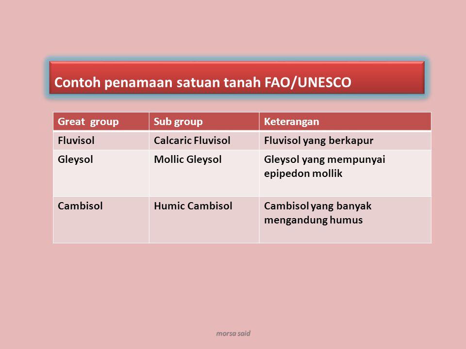 Contoh penamaan satuan tanah FAO/UNESCO