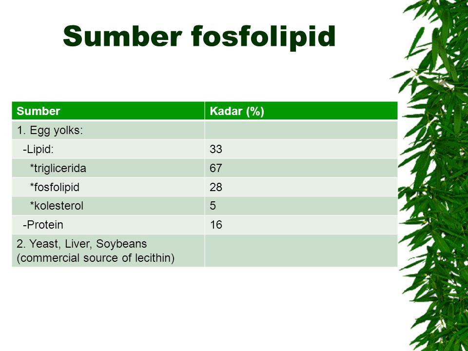 Sumber fosfolipid Sumber Kadar (%) 1. Egg yolks: -Lipid: 33