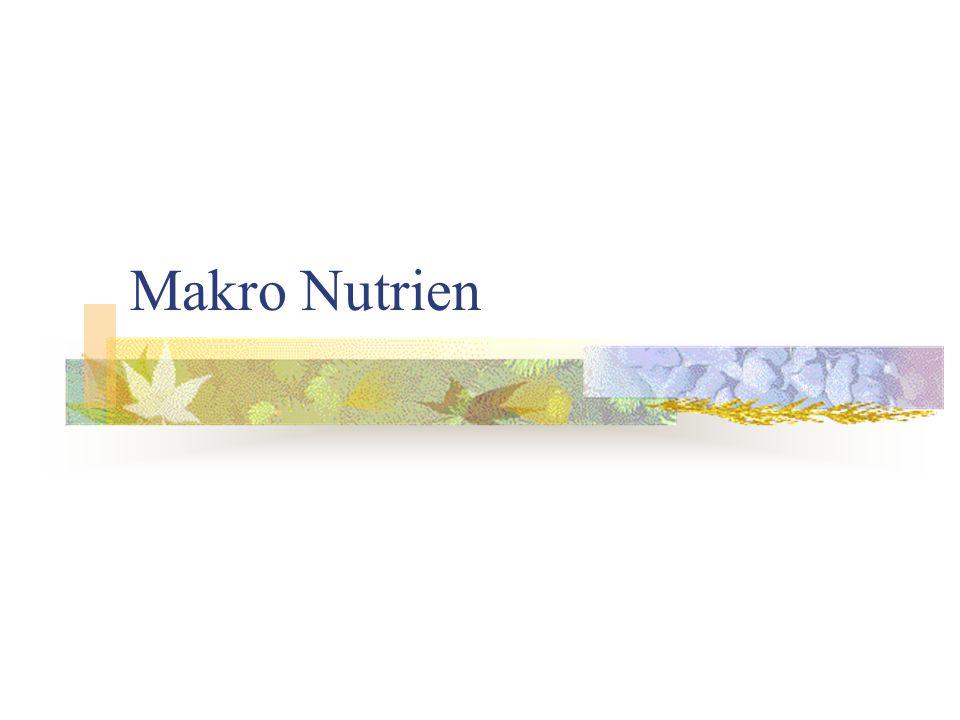 Makro Nutrien