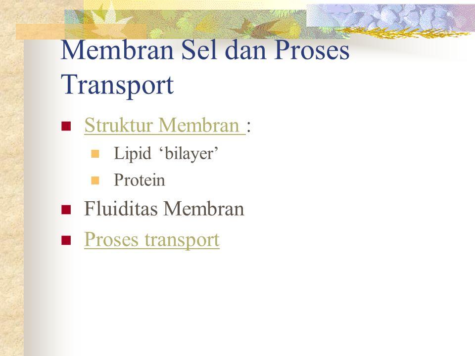 Membran Sel dan Proses Transport