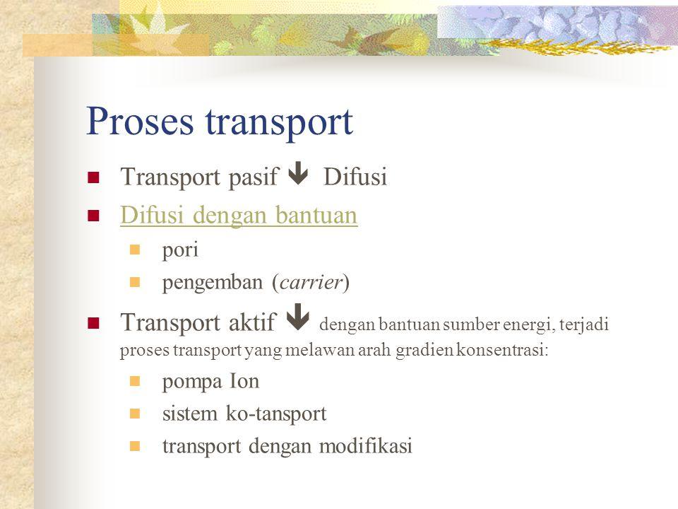 Proses transport Transport pasif  Difusi Difusi dengan bantuan