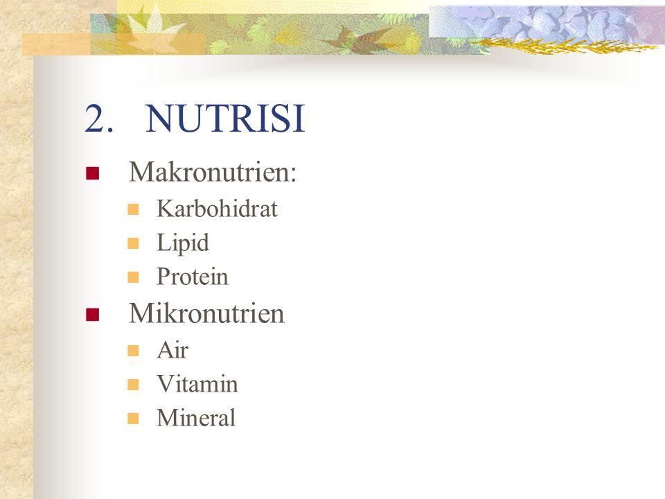 NUTRISI Makronutrien: Mikronutrien Karbohidrat Lipid Protein Air