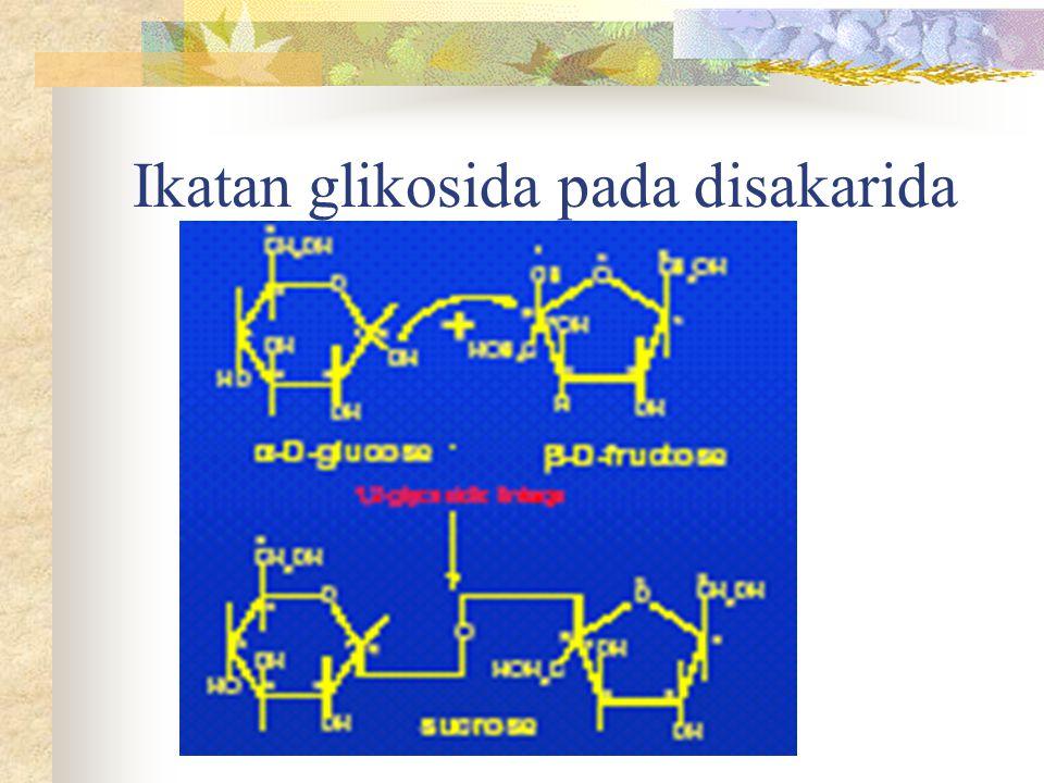Ikatan glikosida pada disakarida