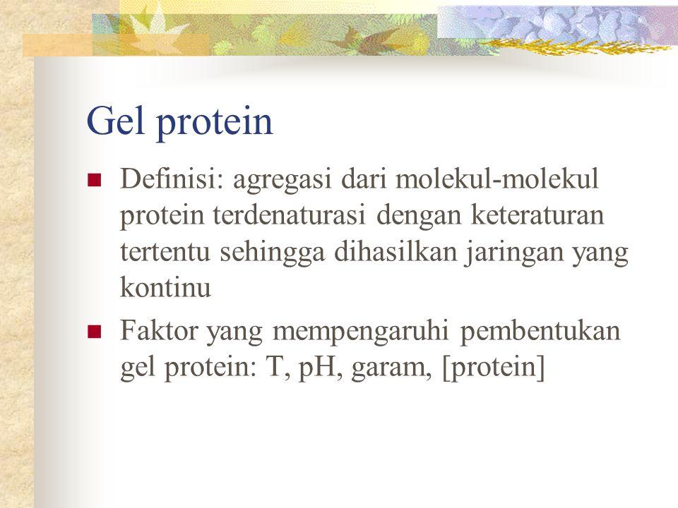 Gel protein Definisi: agregasi dari molekul-molekul protein terdenaturasi dengan keteraturan tertentu sehingga dihasilkan jaringan yang kontinu.