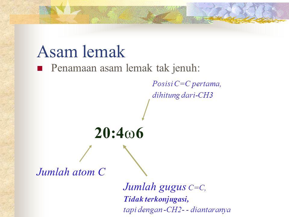 Asam lemak 20:4w6 Penamaan asam lemak tak jenuh: Posisi C=C pertama,