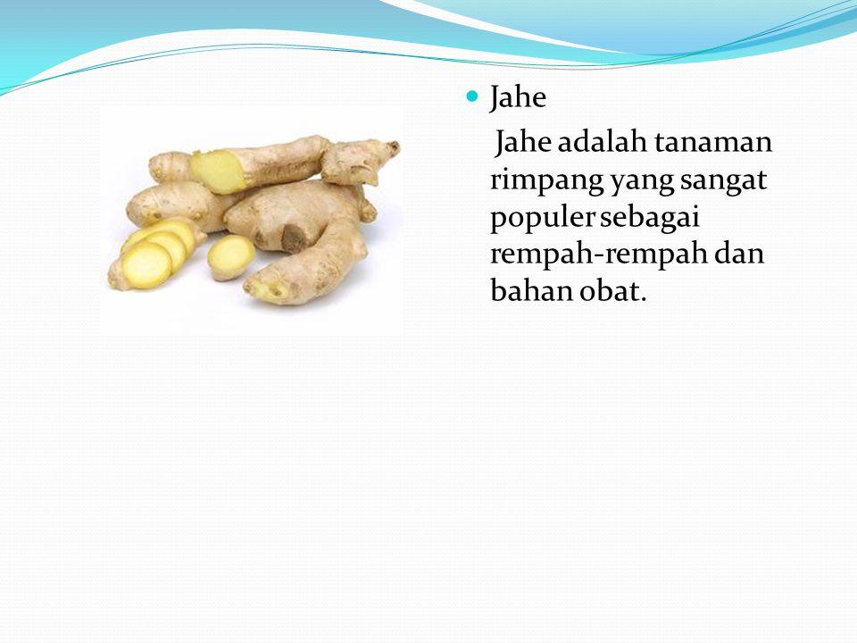 Jahe Jahe adalah tanaman rimpang yang sangat populer sebagai rempah-rempah dan bahan obat.