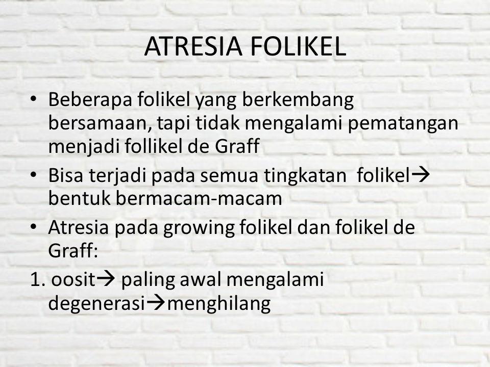 ATRESIA FOLIKEL Beberapa folikel yang berkembang bersamaan, tapi tidak mengalami pematangan menjadi follikel de Graff.