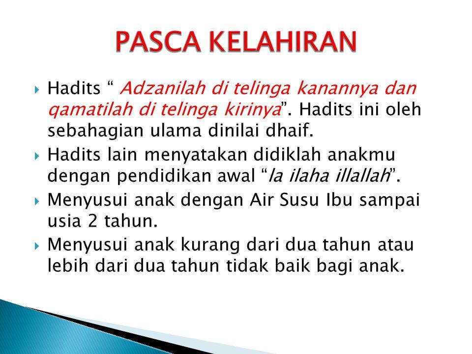 PASCA KELAHIRAN Hadits Adzanilah di telinga kanannya dan qamatilah di telinga kirinya . Hadits ini oleh sebahagian ulama dinilai dhaif.