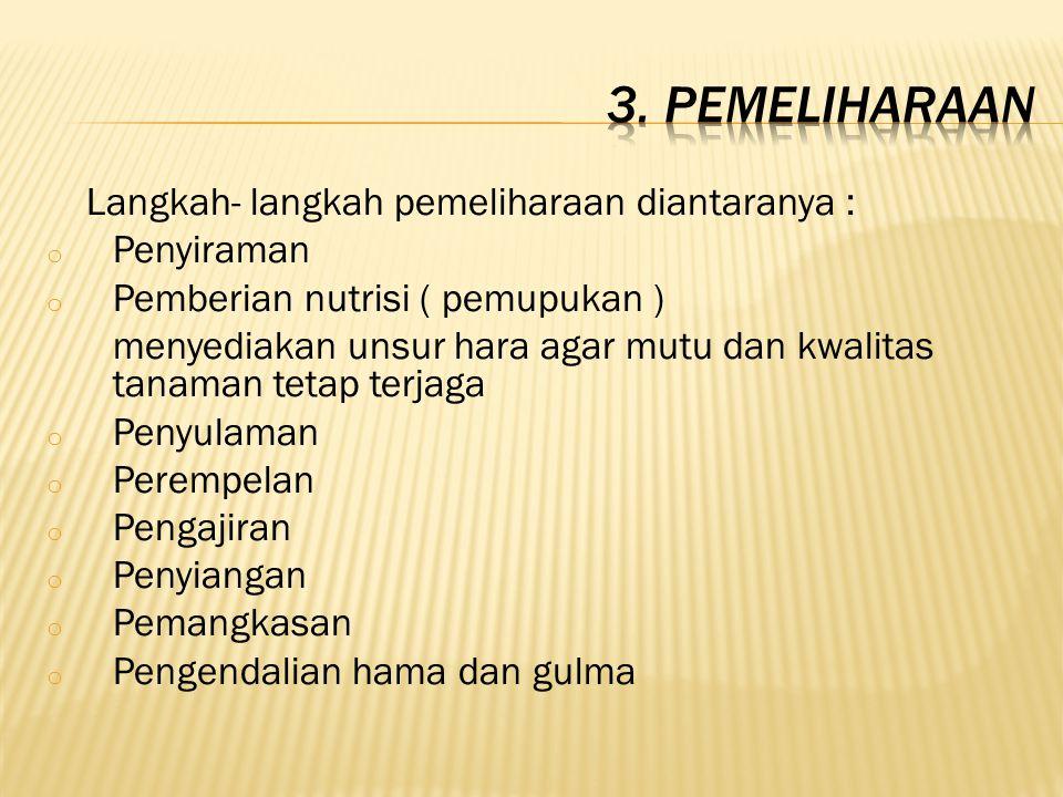 3. Pemeliharaan Langkah- langkah pemeliharaan diantaranya : Penyiraman